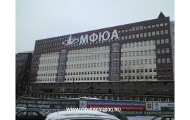 МФЮА (Московская Финансово-Юридическая Академия) 2010 год